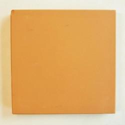 Ref : PORPHYRE JAUNE  10x10