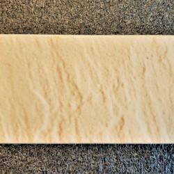 Ref : PALISSY SIENA N° 574  10x20